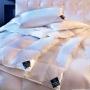 CHALET. Легкое пуховок кассетное одеяло. 100 белый гусиный пух. ТМ Brinkhaus (БринкХаус), Германия