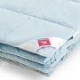 «Камелия». Пуховое кассетное одеяло. 90% серый гусиный пух (экстра), 10% перо. Лёгкие сны, Россия